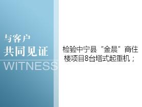 """中宁县""""金晨""""商住楼"""