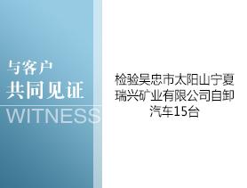 吴忠市太阳山宁夏瑞兴矿业有限公司